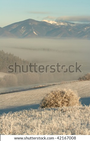country and fog - stock photo