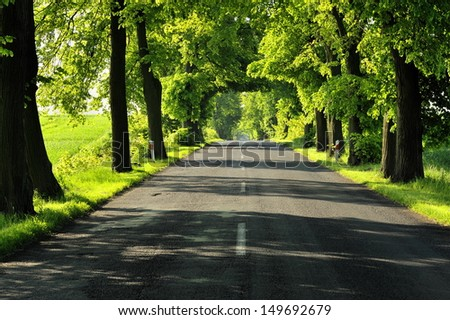 Country asphalt road  - stock photo