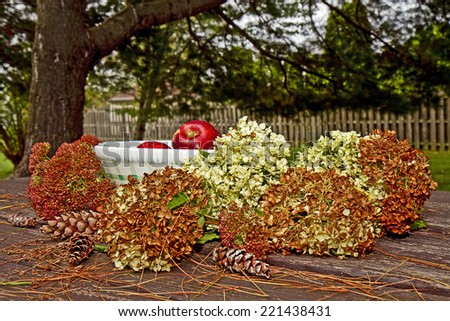 Country bowl sitting outside with fresh apples in it along with dried flowers surrounding it during the Fall season. - stock photo