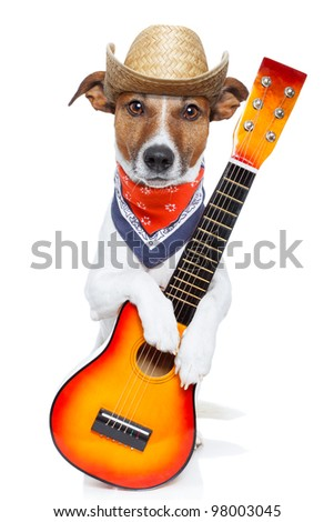 country dog with a guitar and a cowboy hat - stock photo