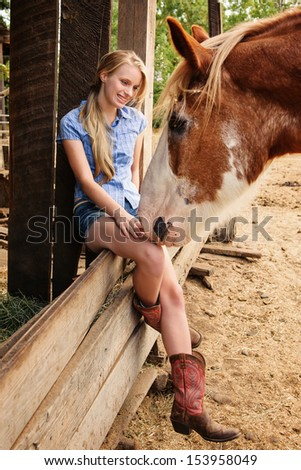 Country Girl sitting on fence talking to Clydesdale Horse - stock photo