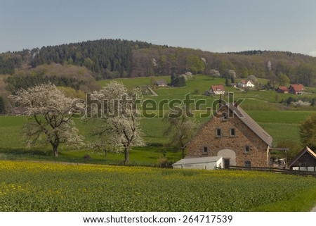 Country house in Hagen, village in the Osnabrueck country, Lower Saxony, Germany - stock photo