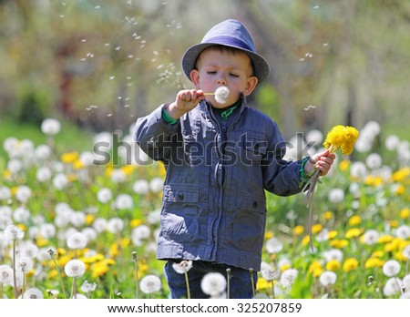 Country kid blowing a dandelion - stock photo