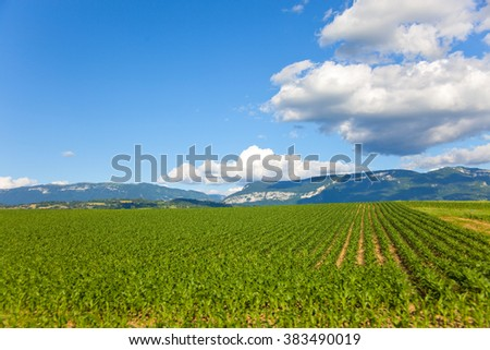 Country landscape from France, region Savoy  - stock photo