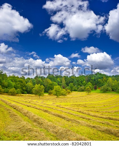 country landscape. hay in autumn field under blue cloudy sky - stock photo
