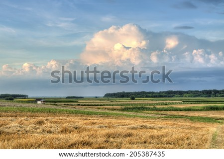Country landscape in the evening hdr   - stock photo