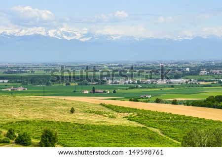 Country landscape of Monferrato (Asti, Piedmont, Italy) at summer, with vineyards and the Alps in background - stock photo