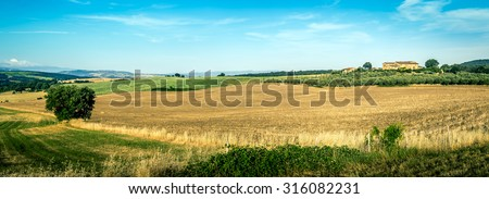 Country landscape of tuscan hills with olive field and old farmhouse in the background - stock photo