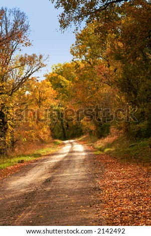 Country Lane in Autumn colors