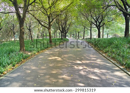 Country road among the fresh green of spring foliage of the trees in noon - stock photo