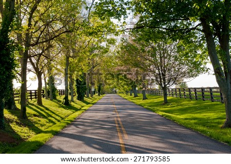 Country road among the horse farms. - stock photo