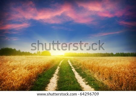 Country road and beautiful sunset. - stock photo
