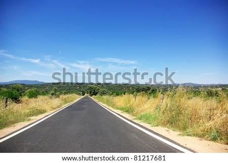 Country road at Portugal, Alentejo region. - stock photo