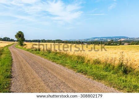Country road at the side of a cornfield - stock photo