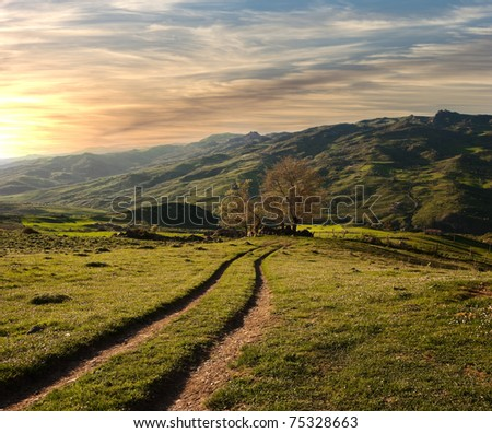 country road crosses the green valley in the sunset - stock photo
