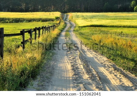 Country road,green trees and sun. - stock photo
