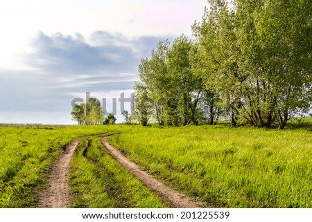 Country road in a field in spring evening - stock photo