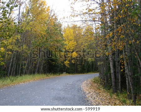 country road in autumn, fall colors - stock photo