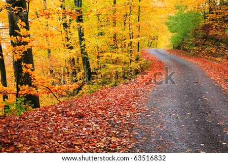 Country road in autumn landscape - stock photo