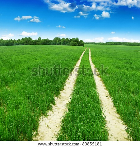 Country road in green field. - stock photo