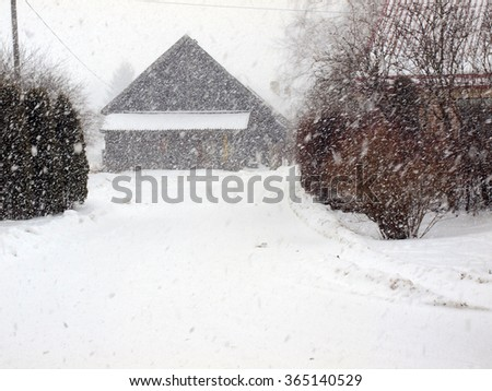 Country road in intensive snowfall with low visibility.       - stock photo