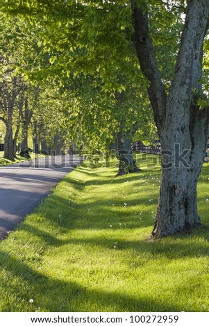 Country road in Kentucky at spring - stock photo