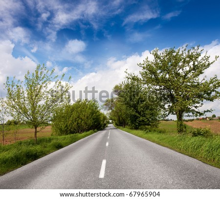Country road in spring - stock photo