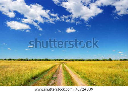 country road in summer field and clouds on blue sky