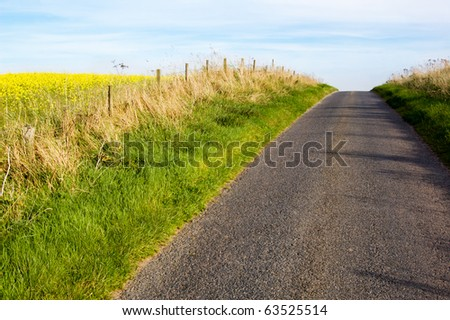 country road in the farmland - stock photo