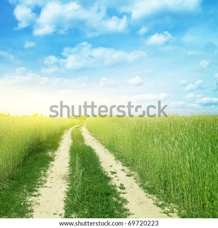 Country road in wheat field and sunlight. - stock photo