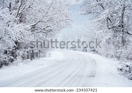 Country road leading among frosted trees - stock photo