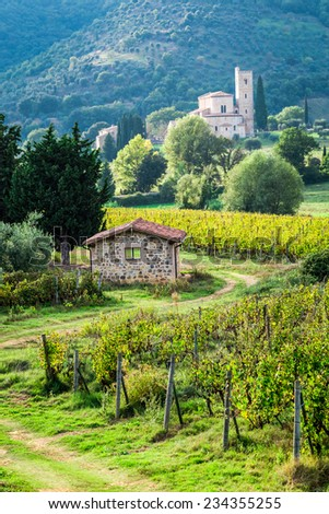 Country road leading through vineyards to the monastery - stock photo