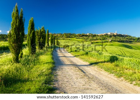 Country road leading to Pienza, Tuscany
