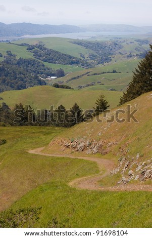 Country road over green hills in Marin County, California - stock photo