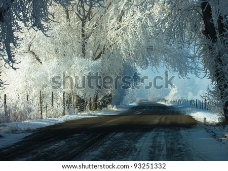 Country Road Surrounded by Hoar-frosted Trees - stock photo