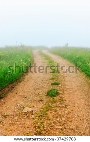 Country road through a field in a misty morning