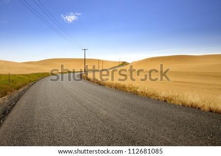 Country Road Through Farmland - stock photo