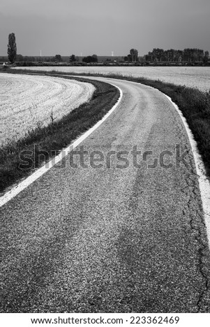Country road through paddy fields. BW image - stock photo