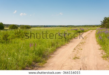 Country road through summer field - stock photo