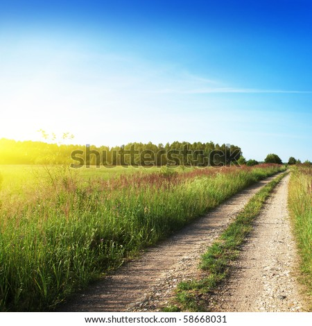 Country road to forest and sun. - stock photo