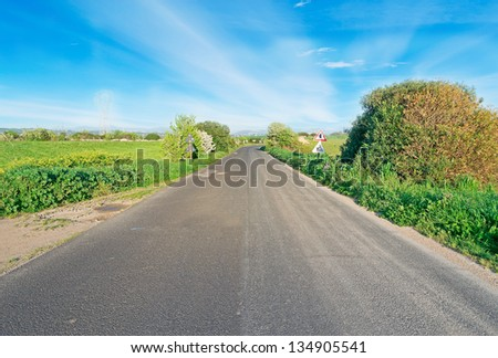 country road under a blue sky - stock photo