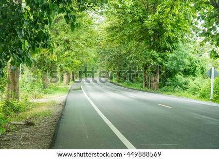 Country road with big tree, north of thailand - stock photo