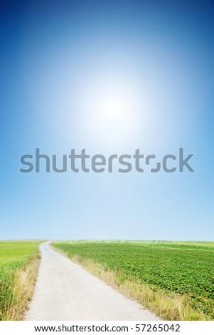 country road with cloudless sunny sky - stock photo