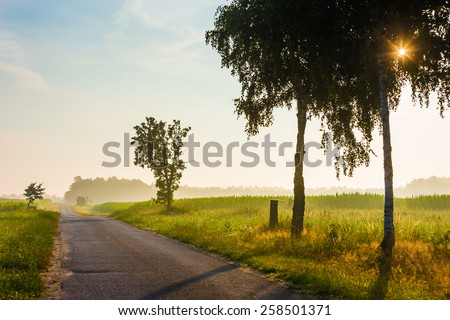Country road with trees along the field in rural landscape on sunrise - stock photo