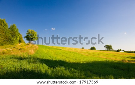 Country side landscape at the end of summer