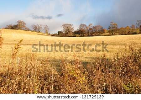 countryside - stock photo