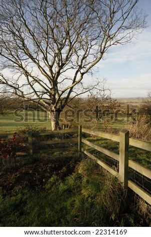 countryside beoley worcestershire midlands england uk