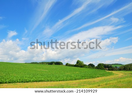 Countryside farm field landscape with blue sky - stock photo