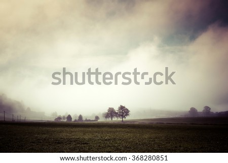 countryside in the mist