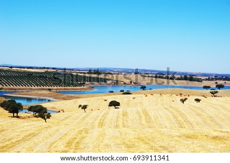 Countryside landscape.Region of Alentejo, Portugal.
